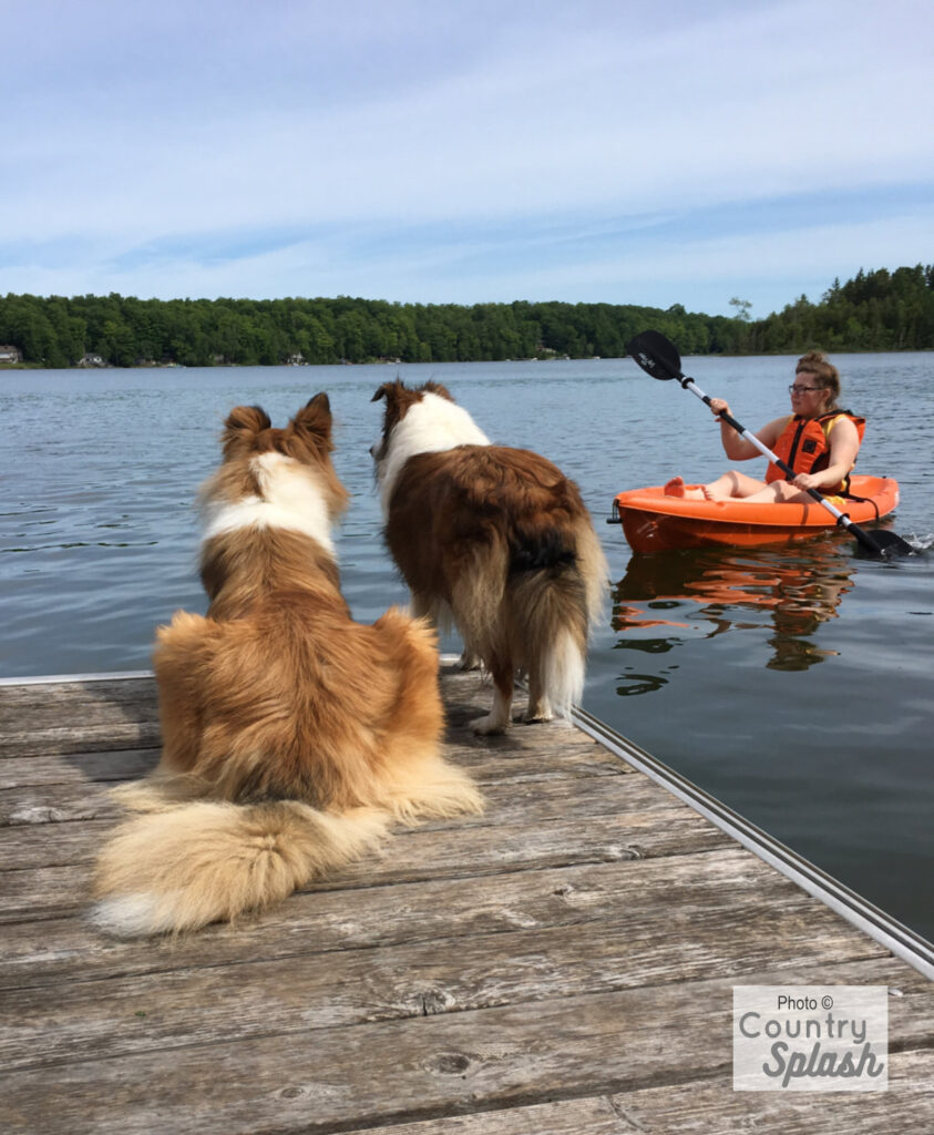3.  When out on your kayak, always wear your PFD!